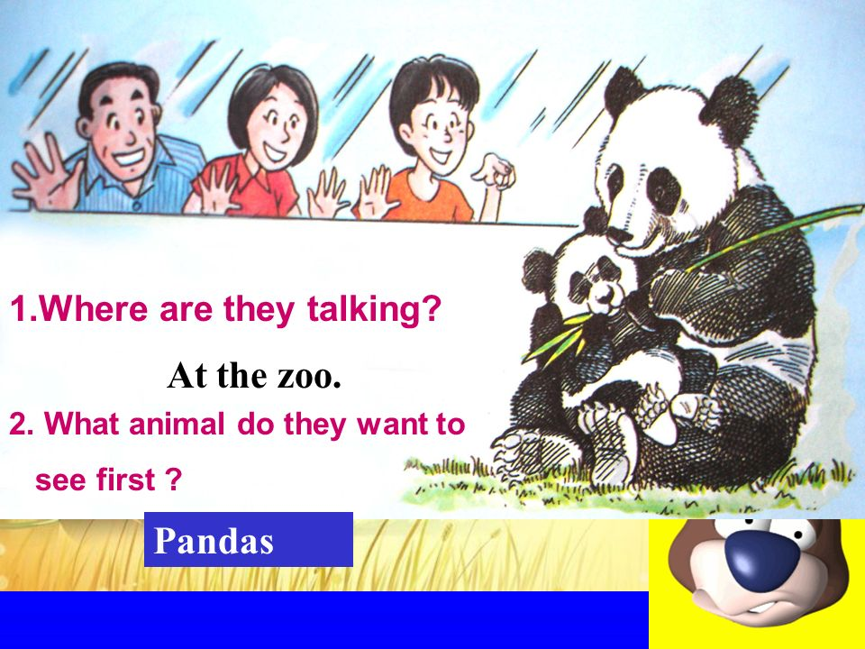 1.What does a panda look like.