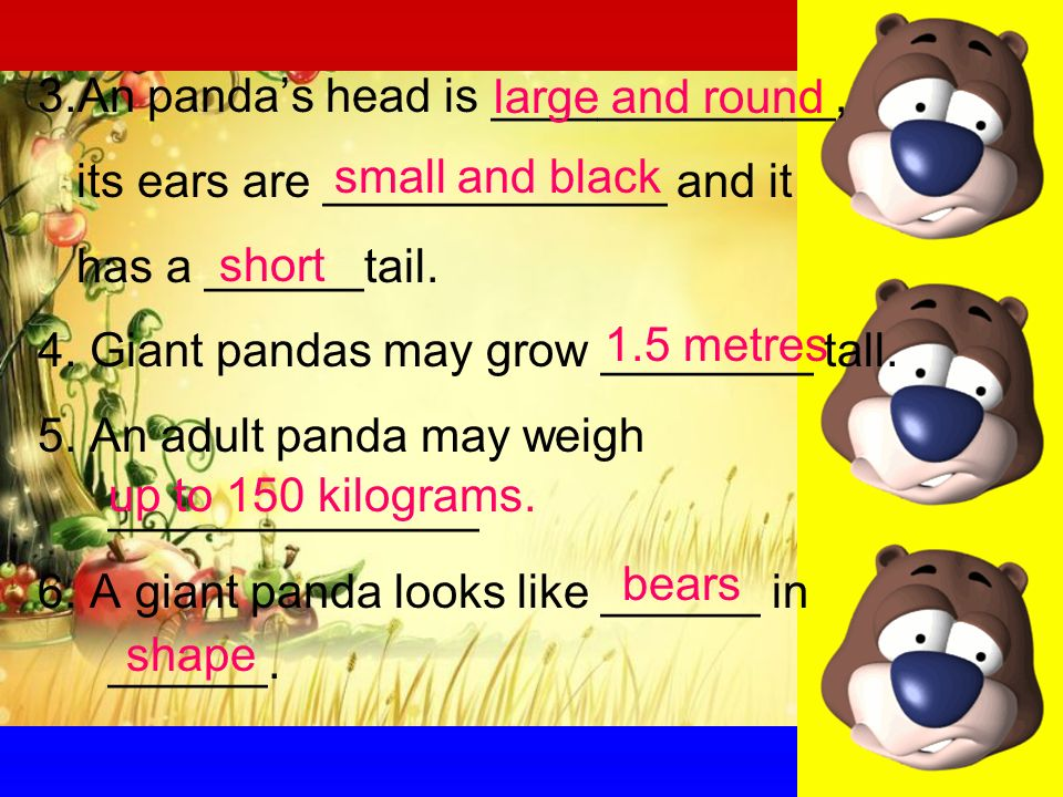 3.An pandas head is _____________, its ears are _____________ and it has a ______tail.