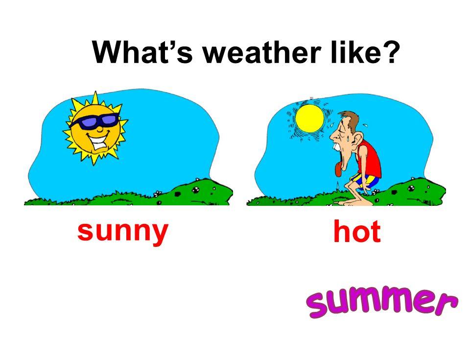 sunny hot