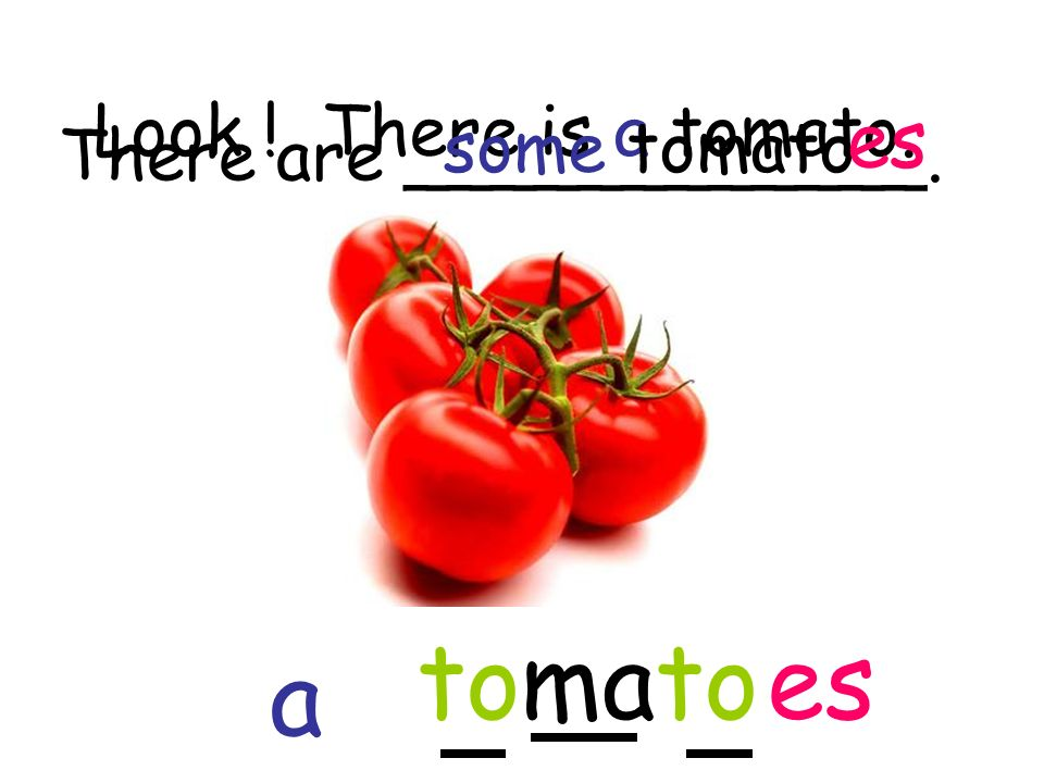 Look ! There is a tomato. tomato a es There are ____________. some tomato es