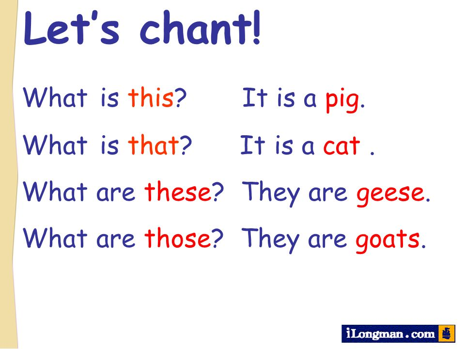 Lets chant! What is this? It is a pig. What is that? It is a cat. What are these? They are geese. What are those? They are goats.