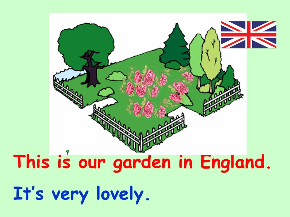 This is our garden in England. Its very lovely.