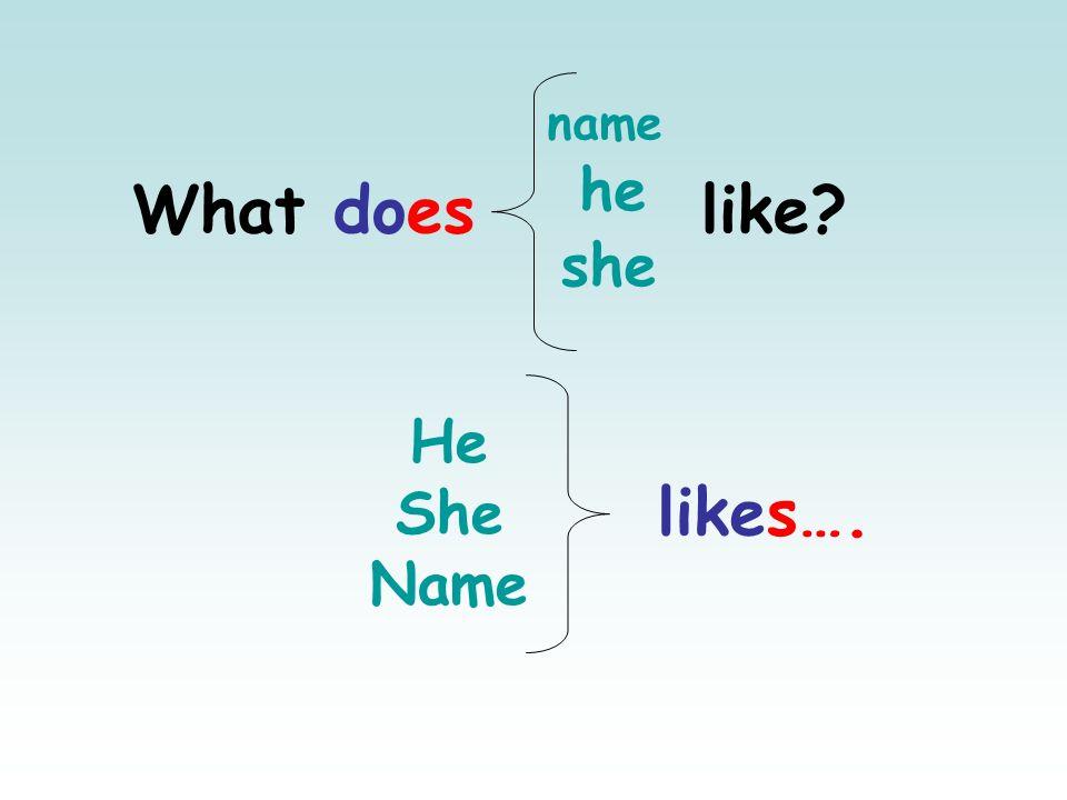 What does like? she he name He She Name likes….