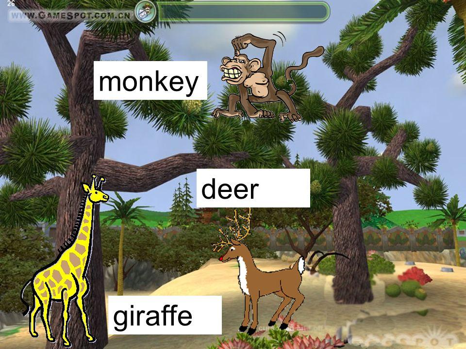 monkey giraffe