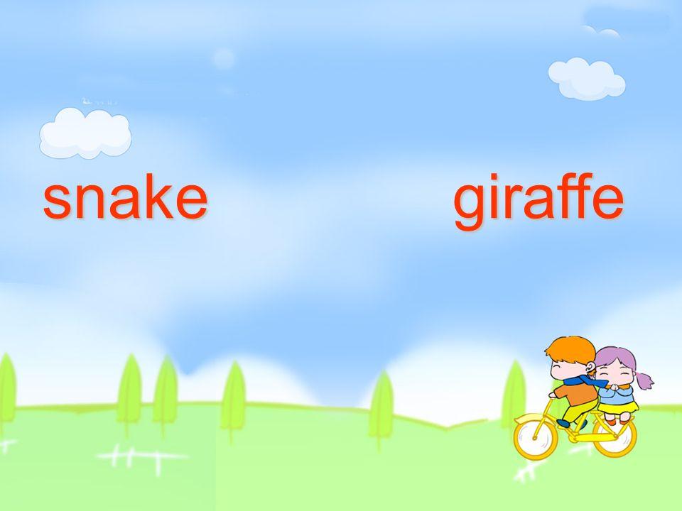 snake giraffe