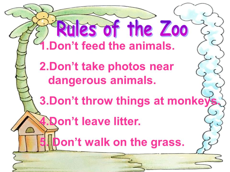 1.Dont feed the animals. 2.Dont take photos near dangerous animals.