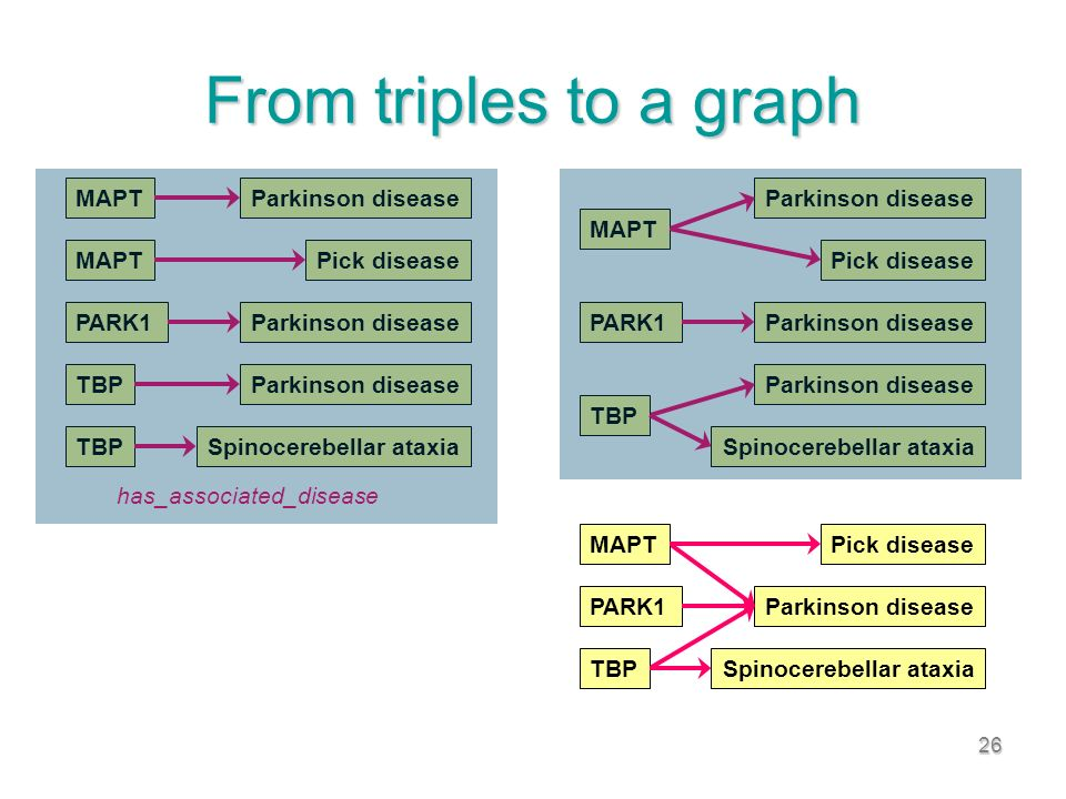 26 From triples to a graph PARK1Parkinson disease has_associated_disease MAPTParkinson disease MAPTPick disease TBPParkinson disease TBPSpinocerebellar ataxia PARK1Parkinson disease MAPT Pick disease Parkinson disease TBP Spinocerebellar ataxia PARK1Parkinson disease MAPTPick disease TBPSpinocerebellar ataxia