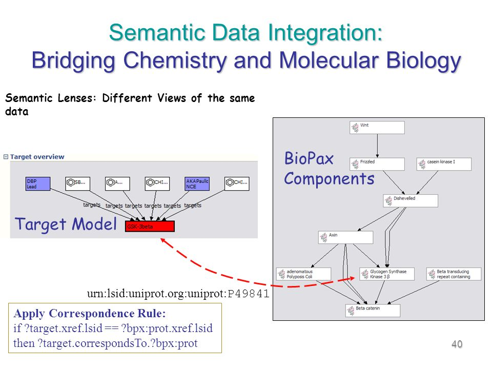 40 Semantic Data Integration: Bridging Chemistry and Molecular Biology urn:lsid:uniprot.org:uniprot: P49841 Semantic Lenses: Different Views of the same data Apply Correspondence Rule: if target.xref.lsid == bpx:prot.xref.lsid then target.correspondsTo. bpx:prot BioPax Components Target Model