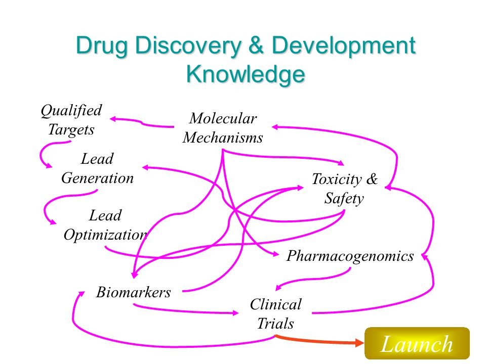 7 Drug Discovery & Development Knowledge Qualified Targets Lead Generation Toxicity & Safety Biomarkers Pharmacogenomics Clinical Trials Molecular Mechanisms Lead Optimization Launch