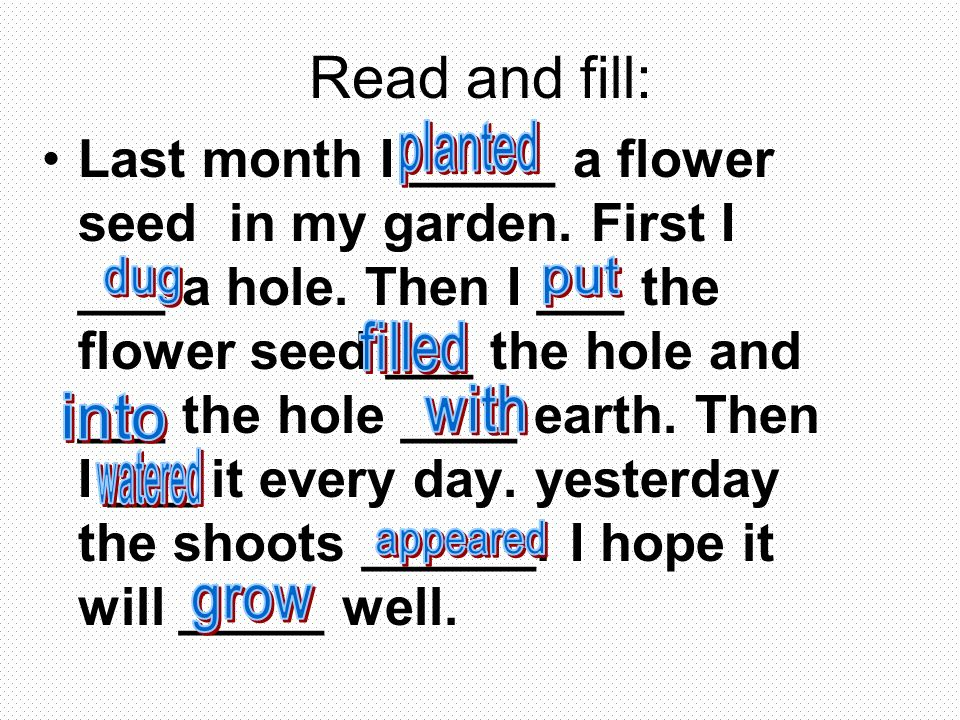 Read and fill: Last month I _____ a flower seed in my garden.