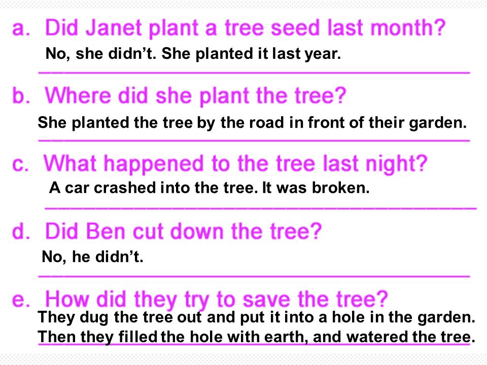 No, she didnt. She planted it last year. A car crashed into the tree.