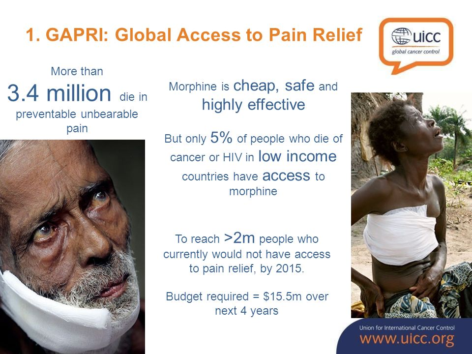 1. GAPRI: Global Access to Pain Relief More than 3.4 million die in preventable unbearable pain Morphine is cheap, safe and highly effective But only