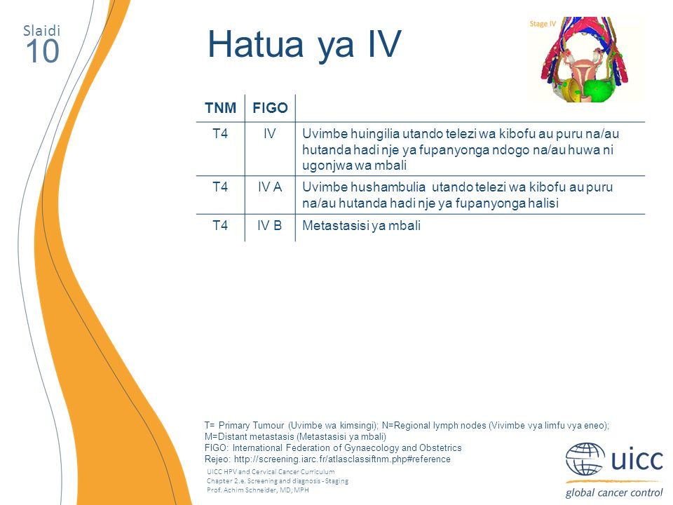 UICC HPV and Cervical Cancer Curriculum Chapter 2.e. Screening and diagnosis - Staging Prof. Achim Schneider, MD, MPH Slaidi 10 Hatua ya IV TNMFIGO T4