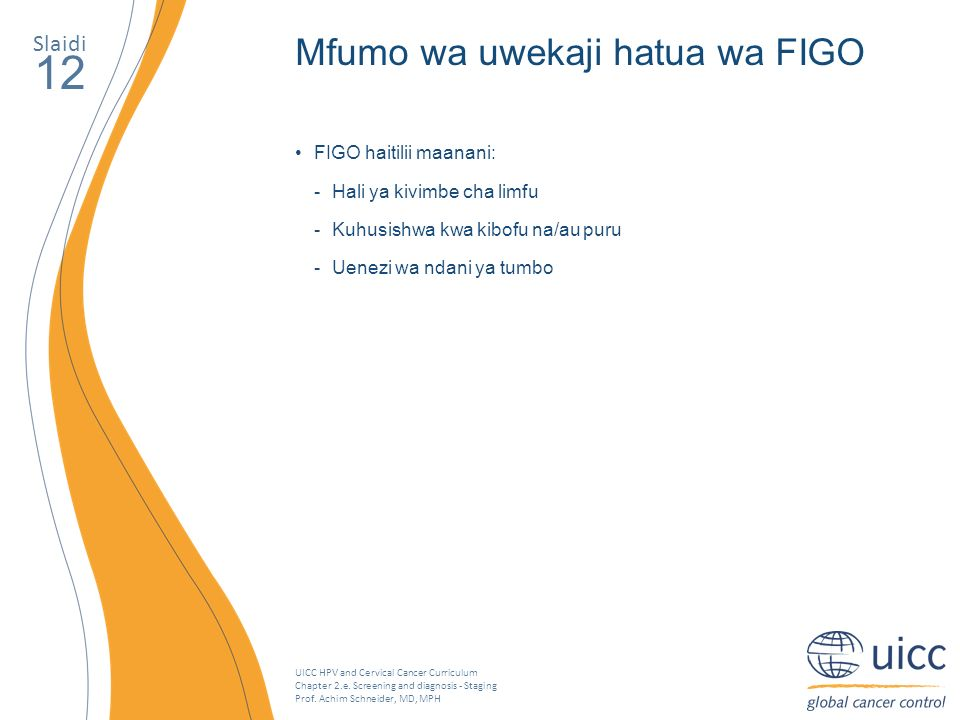 UICC HPV and Cervical Cancer Curriculum Chapter 2.e. Screening and diagnosis - Staging Prof. Achim Schneider, MD, MPH Slaidi 12 Mfumo wa uwekaji hatua