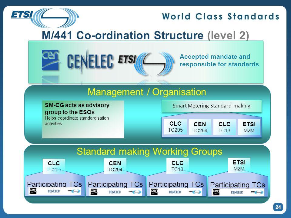 24 M/441 Co-ordination Structure (level 2) Accepted mandate and responsible for standards CEN TC294 CLC TC13 CLC TC205 ETSI M2M Smart Metering Standar