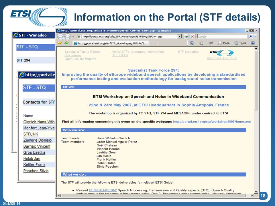 SEM08-14 Information on the Portal (STF details) 18