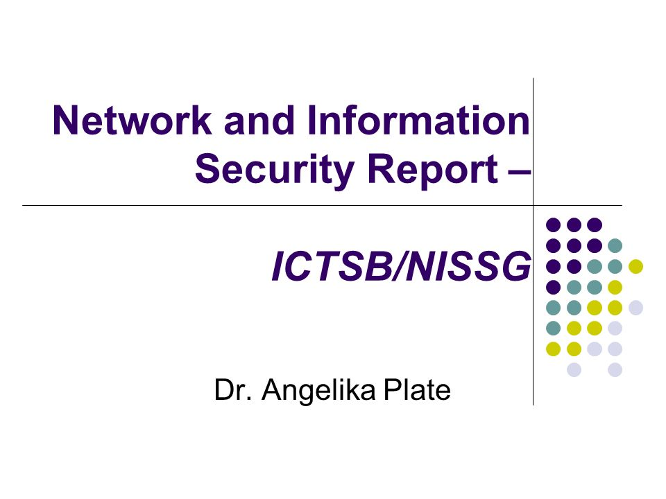 Background Existing NIS-Report from 2003 The new EU Report Communication form the Commission to the Council, the European Parliament, the European Economic and Social Committee and the Committee of the Regions: A strategy for a Secure Information Society – Dialog, partnership and empowerment A lot of new developments in Network and Information Security