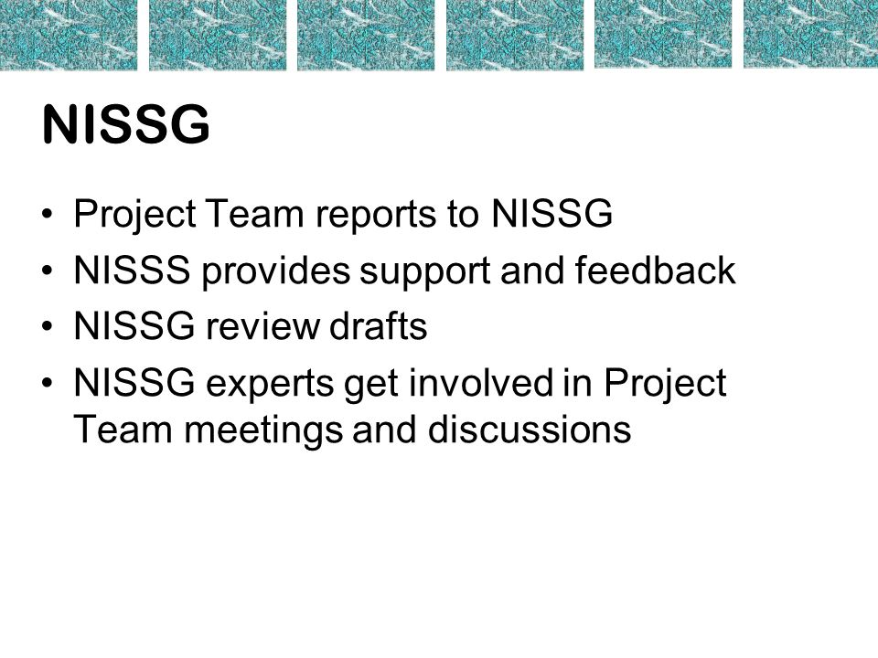 NISSG Project Team reports to NISSG NISSS provides support and feedback NISSG review drafts NISSG experts get involved in Project Team meetings and discussions