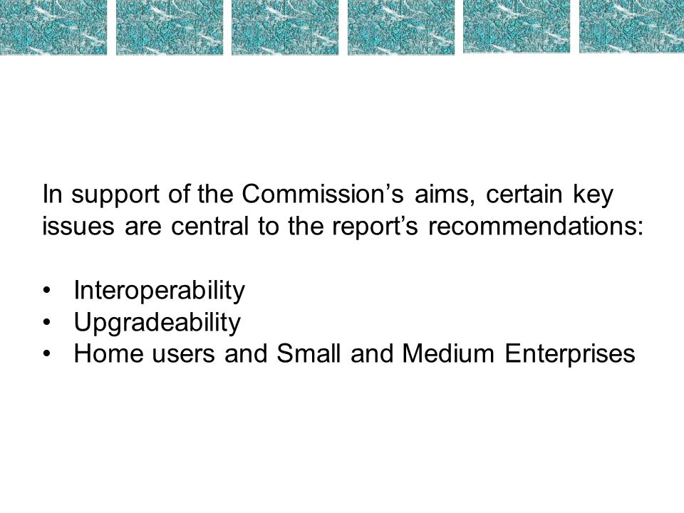 In support of the Commissions aims, certain key issues are central to the reports recommendations: Interoperability Upgradeability Home users and Smal