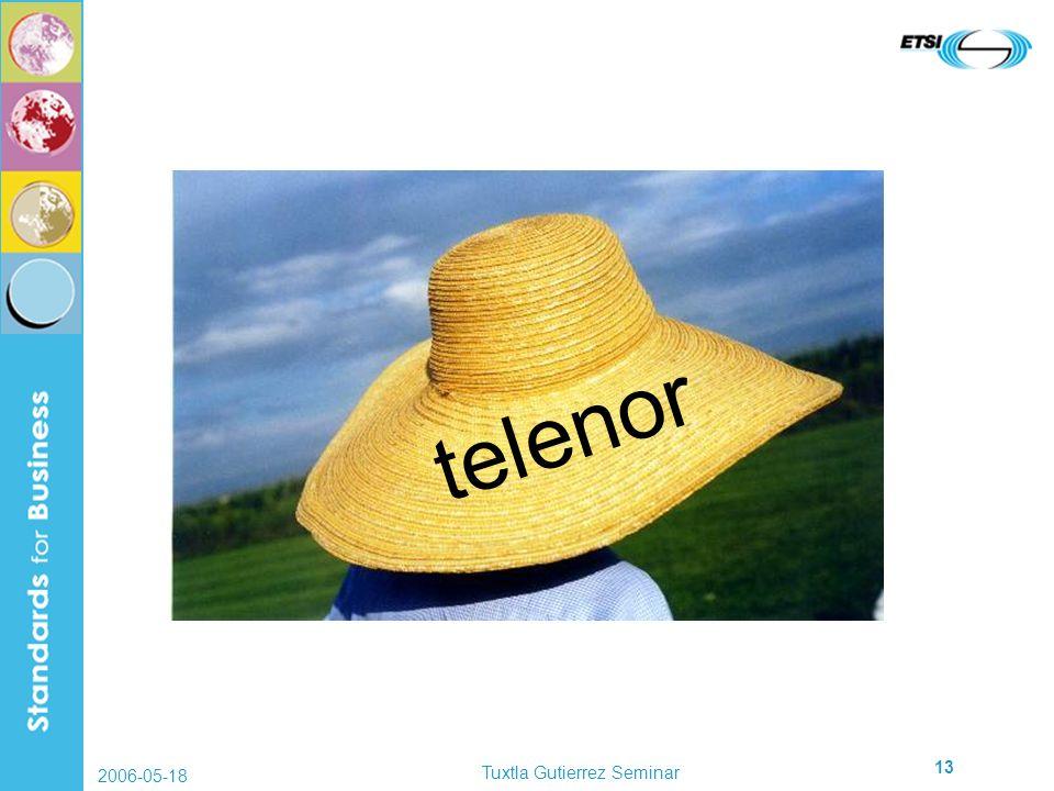 2006-05-18 Tuxtla Gutierrez Seminar 13 telenor