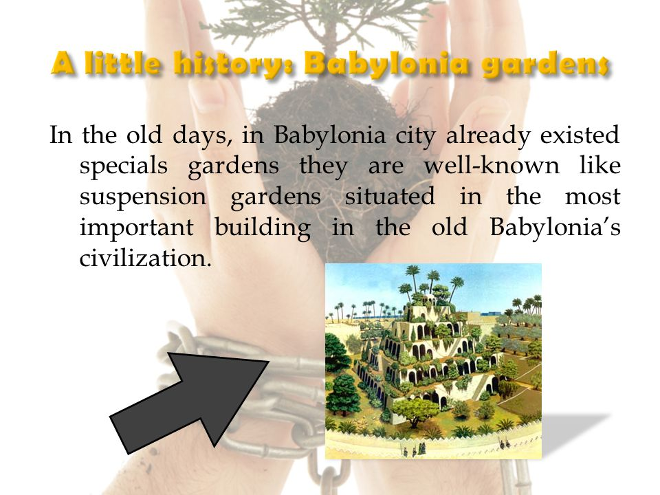 In the old days, in Babylonia city already existed specials gardens they are well-known like suspension gardens situated in the most important building in the old Babylonias civilization.