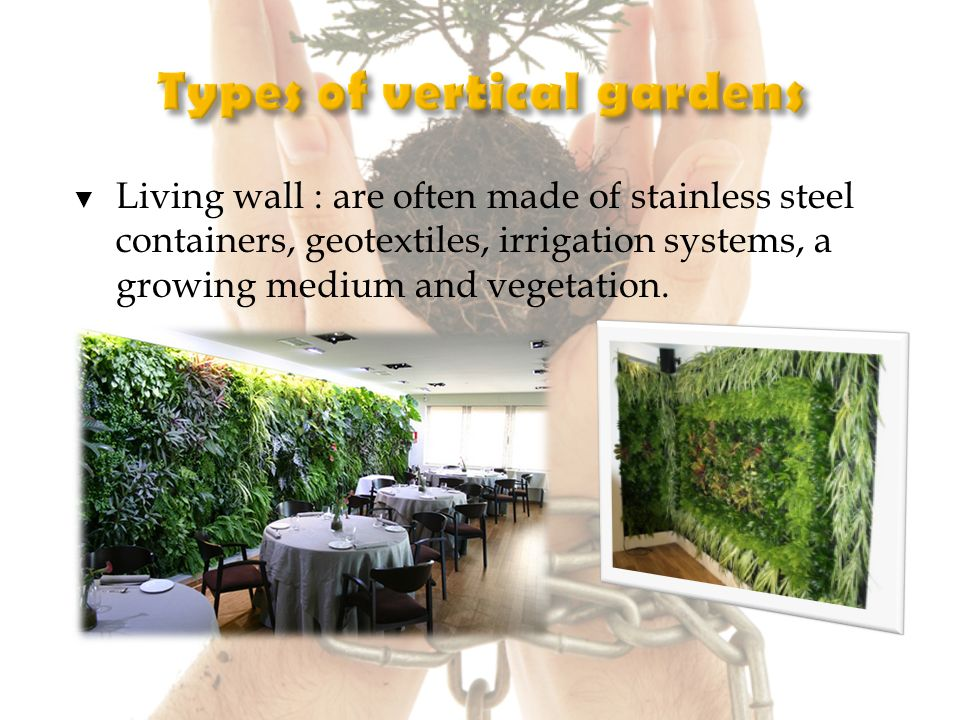 Living wall : are often made of stainless steel containers, geotextiles, irrigation systems, a growing medium and vegetation.