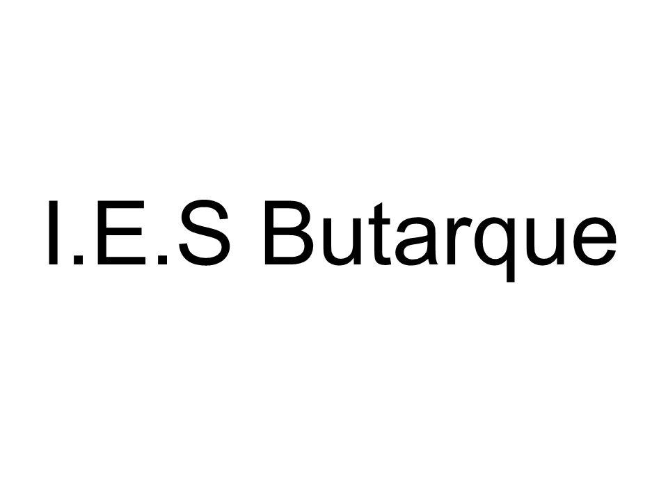 I.E.S Butarque