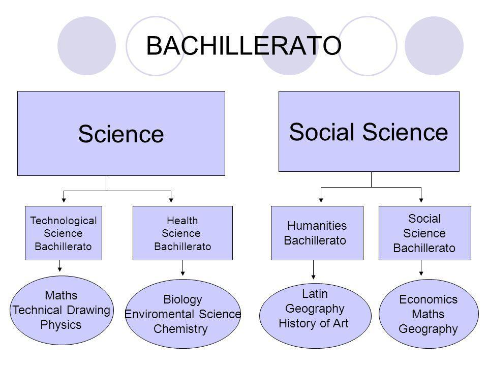 BACHILLERATO Common sujects :English Language History Expansion of English / Literature Philosophy If you approve the courses you have two options: go to the university or go to a module