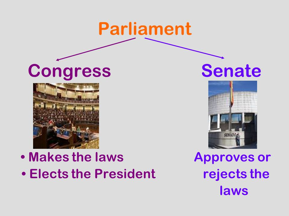 Parliament CongressSenate Makes the lawsApproves or Elects the President rejects the laws