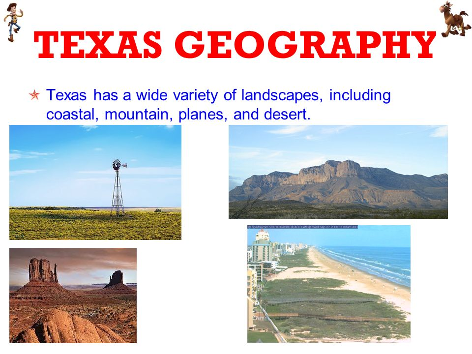 TEXAS GEOGRAPHY Texas has a wide variety of landscapes, including coastal, mountain, planes, and desert.