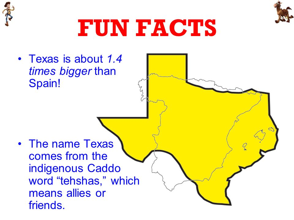 FUN FACTS Texas is about 1.4 times bigger than Spain.