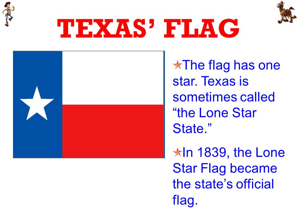 TEXAS FLAG The flag has one star. Texas is sometimes called the Lone Star State.
