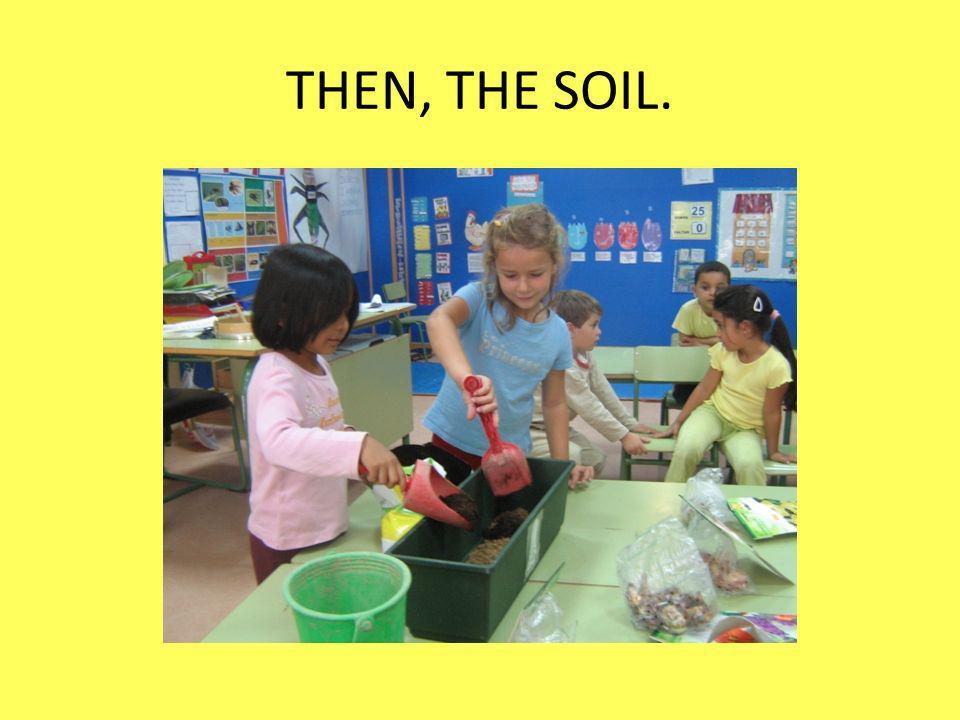 THEN, THE SOIL.