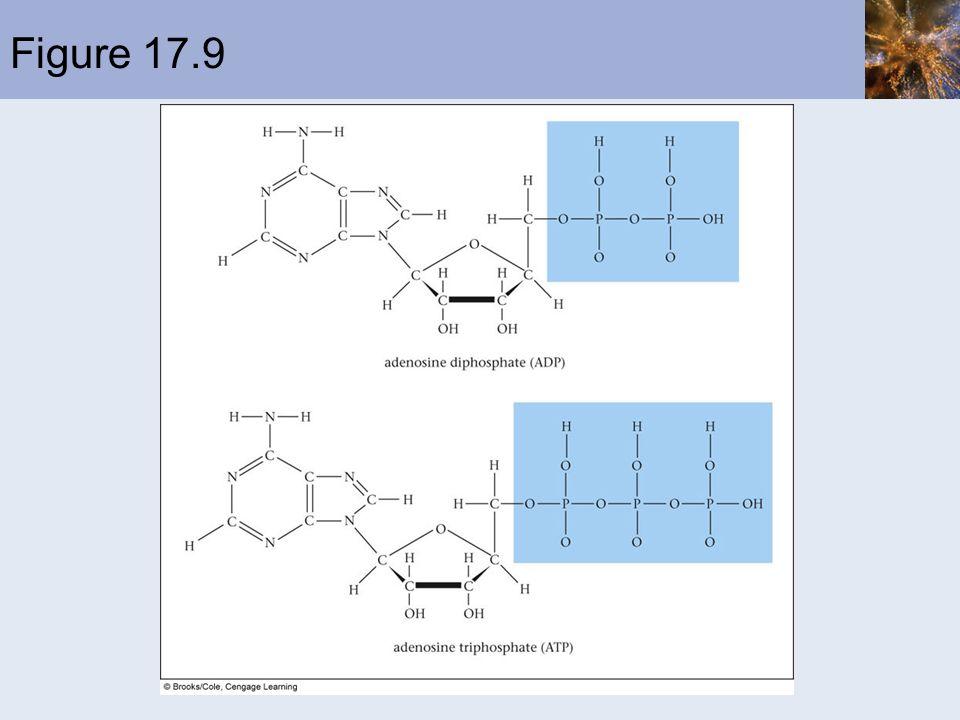 Example 17.9