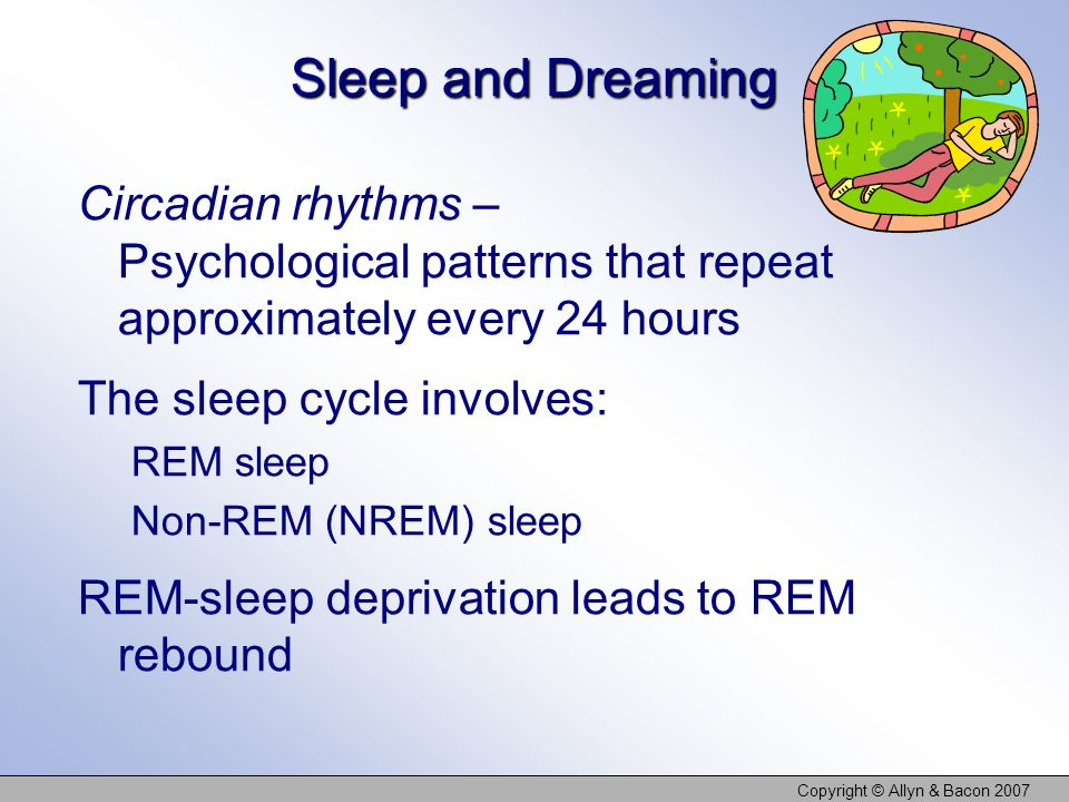 Copyright © Allyn & Bacon 2007 Sleep and Dreaming Circadian rhythms – Psychological patterns that repeat approximately every 24 hours The sleep cycle