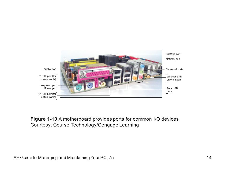 A+ Guide to Managing and Maintaining Your PC, 7e14 Figure 1-10 A motherboard provides ports for common I/O devices Courtesy: Course Technology/Cengage