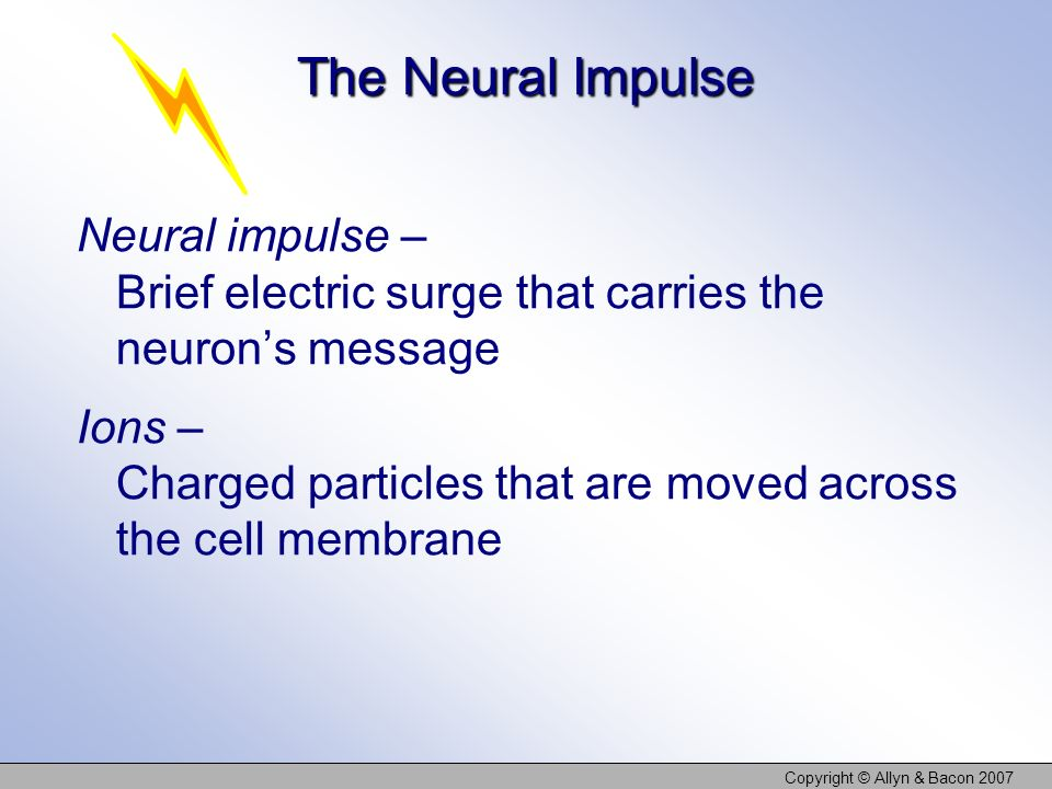 Copyright © Allyn & Bacon 2007 The Neural Impulse Neural impulse – Brief electric surge that carries the neurons message Ions – Charged particles that