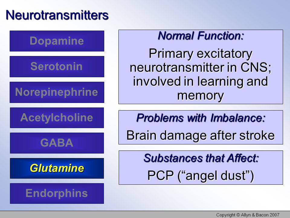 Copyright © Allyn & Bacon 2007Neurotransmitters Dopamine Serotonin Acetylcholine Glutamine Norepinephrine GABA Endorphins Normal Function: Primary exc