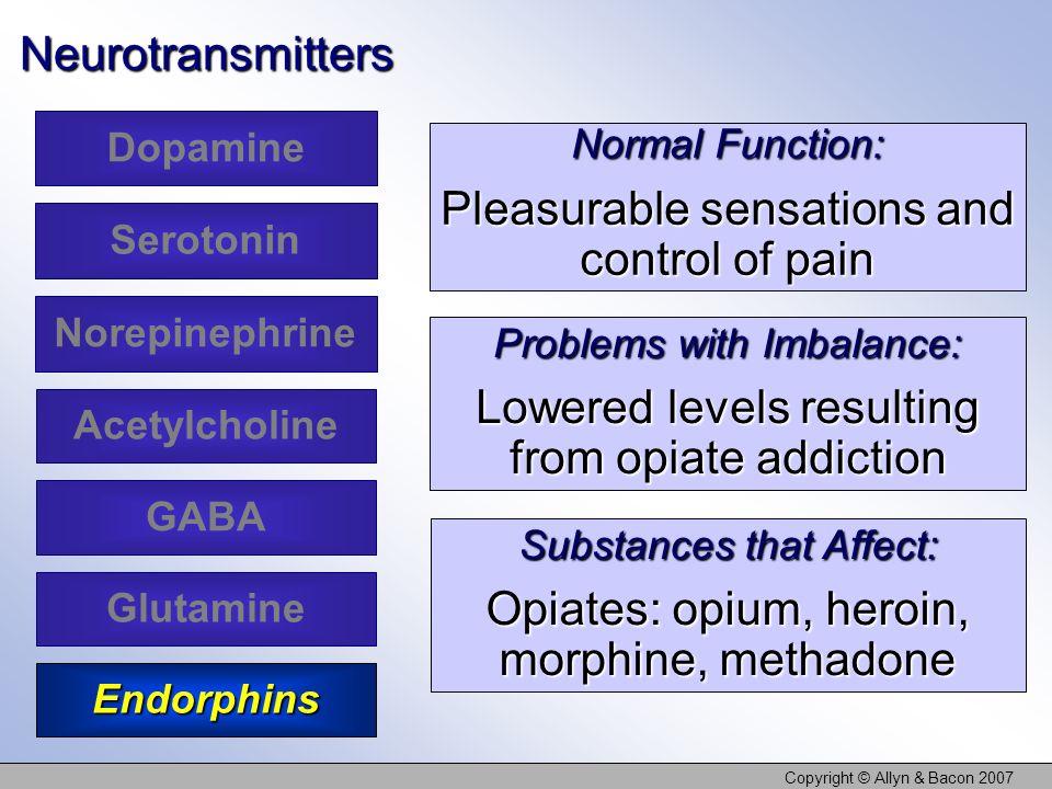 Copyright © Allyn & Bacon 2007Neurotransmitters Dopamine Serotonin Acetylcholine Glutamine Norepinephrine GABA Endorphins Normal Function: Pleasurable