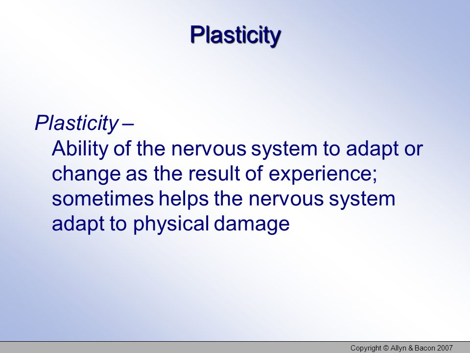 Copyright © Allyn & Bacon 2007 Plasticity Plasticity – Ability of the nervous system to adapt or change as the result of experience; sometimes helps t