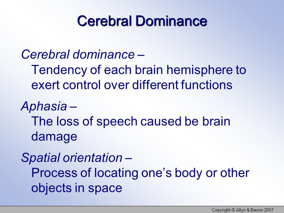Copyright © Allyn & Bacon 2007 Cerebral Dominance Cerebral dominance – Tendency of each brain hemisphere to exert control over different functions Aph