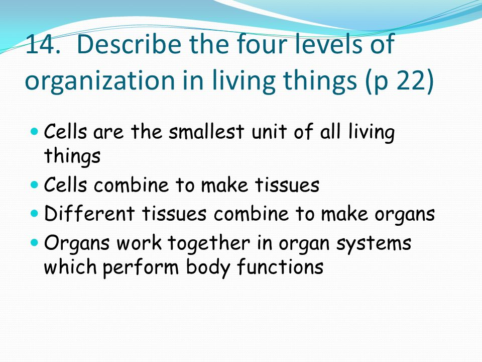 14. Describe the four levels of organization in living things (p 22) Cells are the smallest unit of all living things Cells combine to make tissues Di