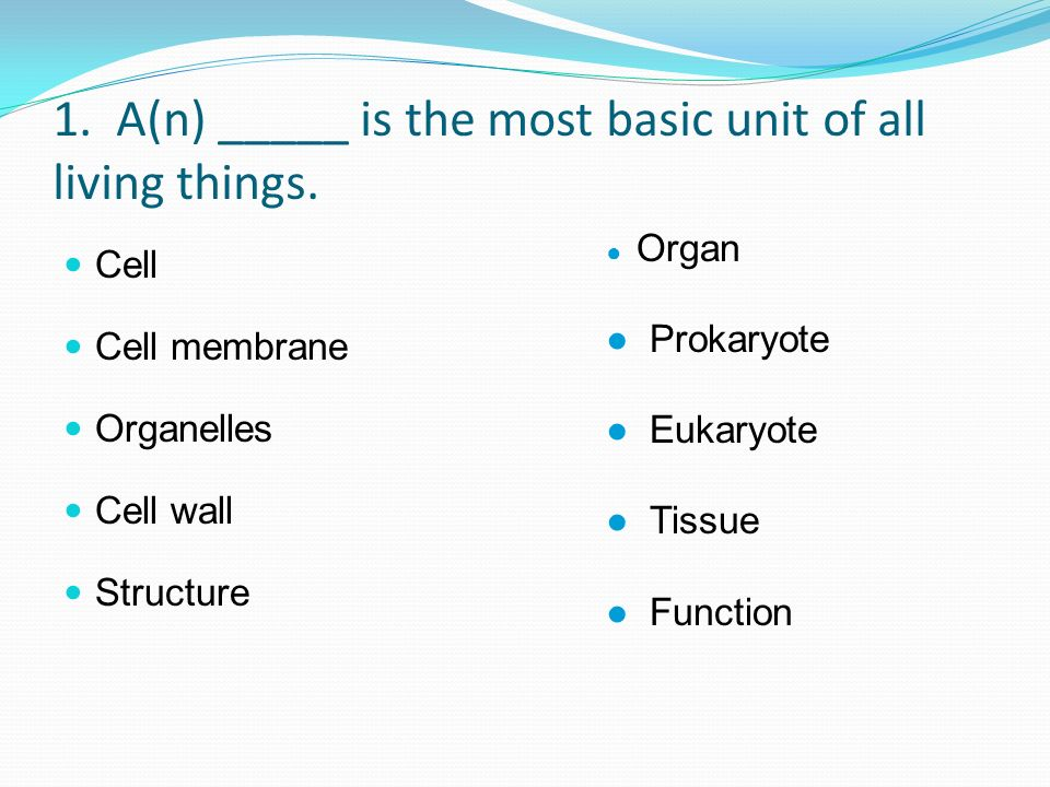 1. A(n) _____ is the most basic unit of all living things. Cell Cell membrane Organelles Cell wall Structure Organ Prokaryote Eukaryote Tissue Functio