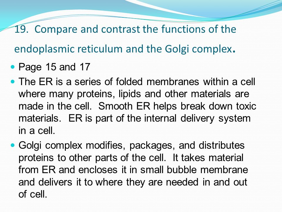 19. Compare and contrast the functions of the endoplasmic reticulum and the Golgi complex. Page 15 and 17 The ER is a series of folded membranes withi