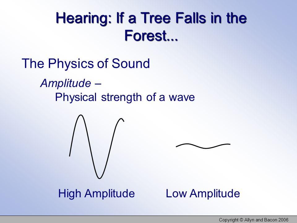 Copyright © Allyn and Bacon 2006 Hearing: If a Tree Falls in the Forest... The Physics of Sound High Amplitude Low Amplitude Amplitude – Physical stre