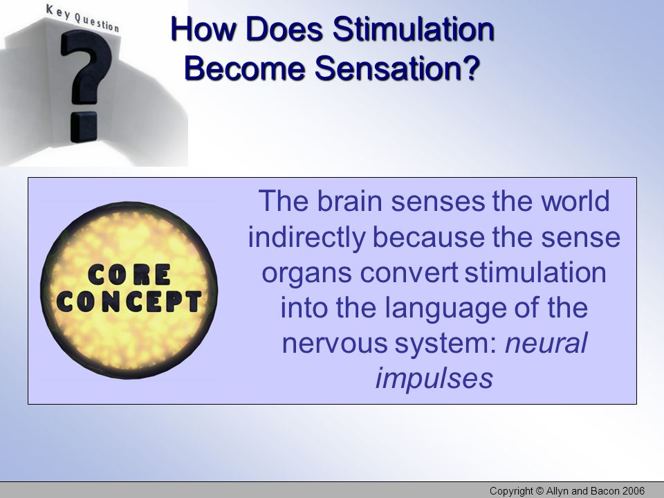 Copyright © Allyn and Bacon 2006 The brain senses the world indirectly because the sense organs convert stimulation into the language of the nervous s