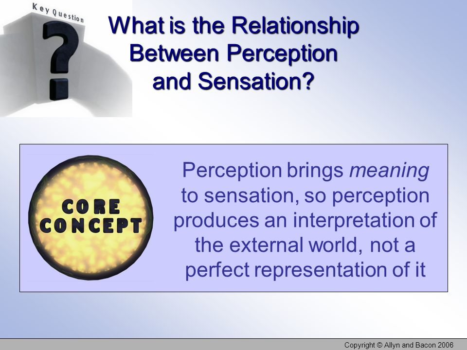 Copyright © Allyn and Bacon 2006 Perception brings meaning to sensation, so perception produces an interpretation of the external world, not a perfect