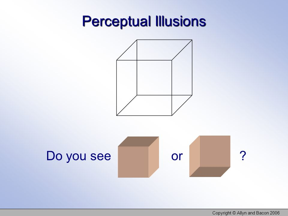 Copyright © Allyn and Bacon 2006 Perceptual Illusions Do you see or ?