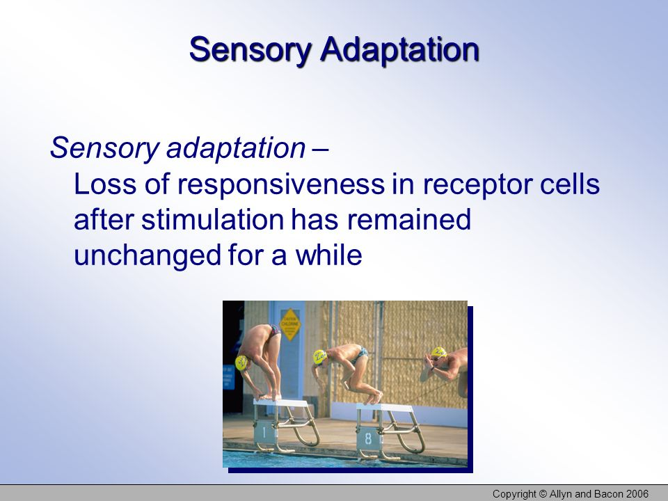 Copyright © Allyn and Bacon 2006 Sensory Adaptation Sensory adaptation – Loss of responsiveness in receptor cells after stimulation has remained uncha