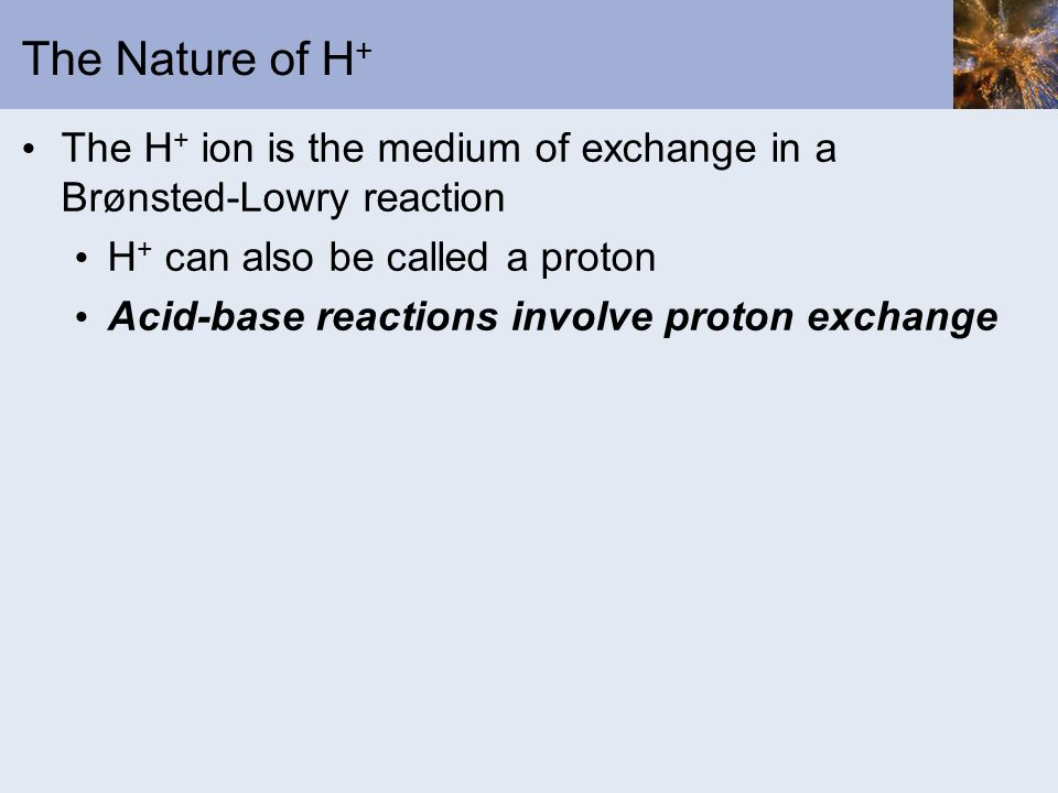 The Nature of H + The H + ion is the medium of exchange in a Brønsted-Lowry reaction H + can also be called a proton Acid-base reactions involve proto